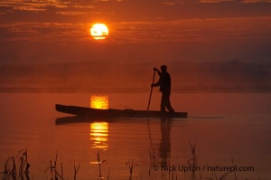 Traditional fishing punt at sunrise, Biebrza Marshes, Poland. Copyright Nick Upton