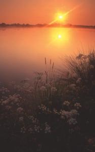 ENWR 34 2 5 swillbrok sunrise