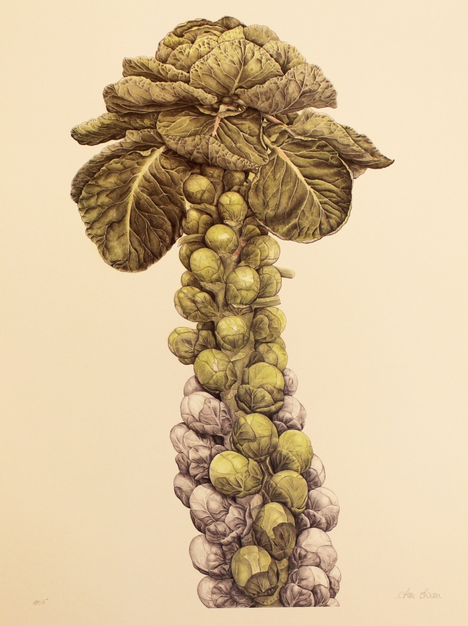 The magnificent Brussel sprout